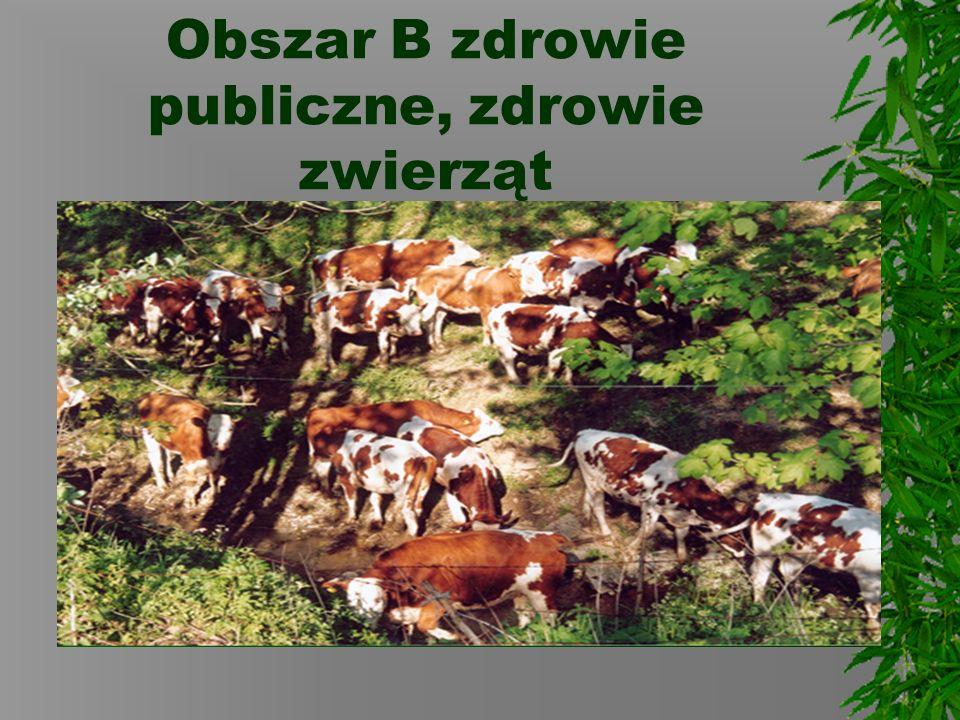 Obszar B zdrowie publiczne, zdrowie zwierząt