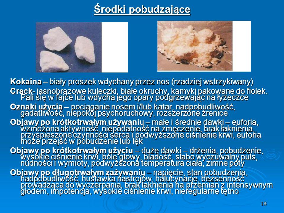 Środki pobudzające Kokaina – biały proszek wdychany przez nos (rzadziej wstrzykiwany)