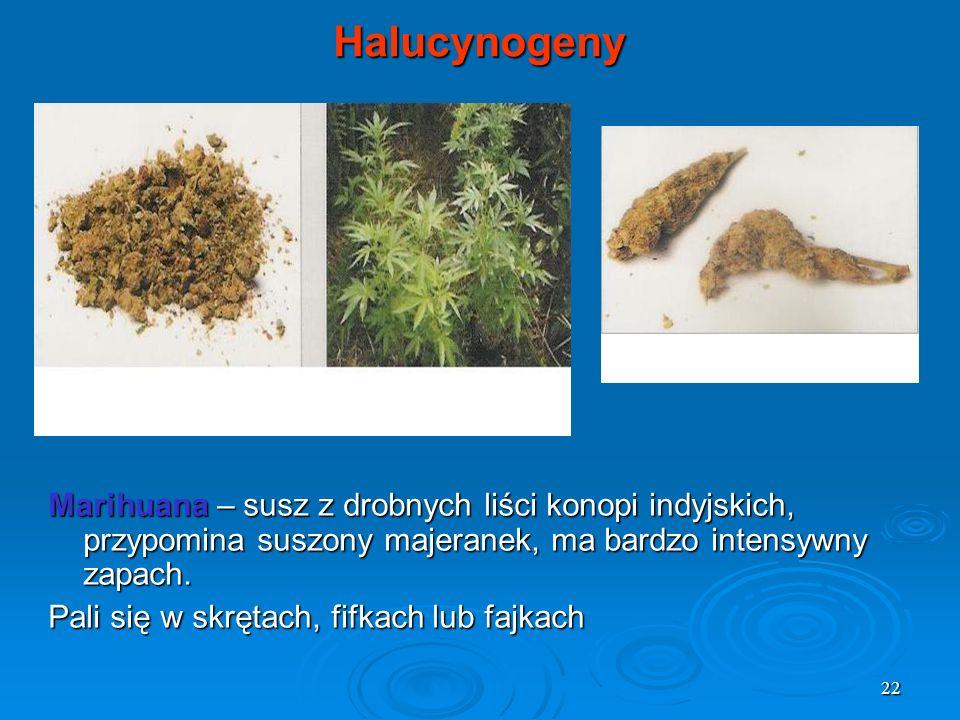 Halucynogeny Marihuana – susz z drobnych liści konopi indyjskich, przypomina suszony majeranek, ma bardzo intensywny zapach.