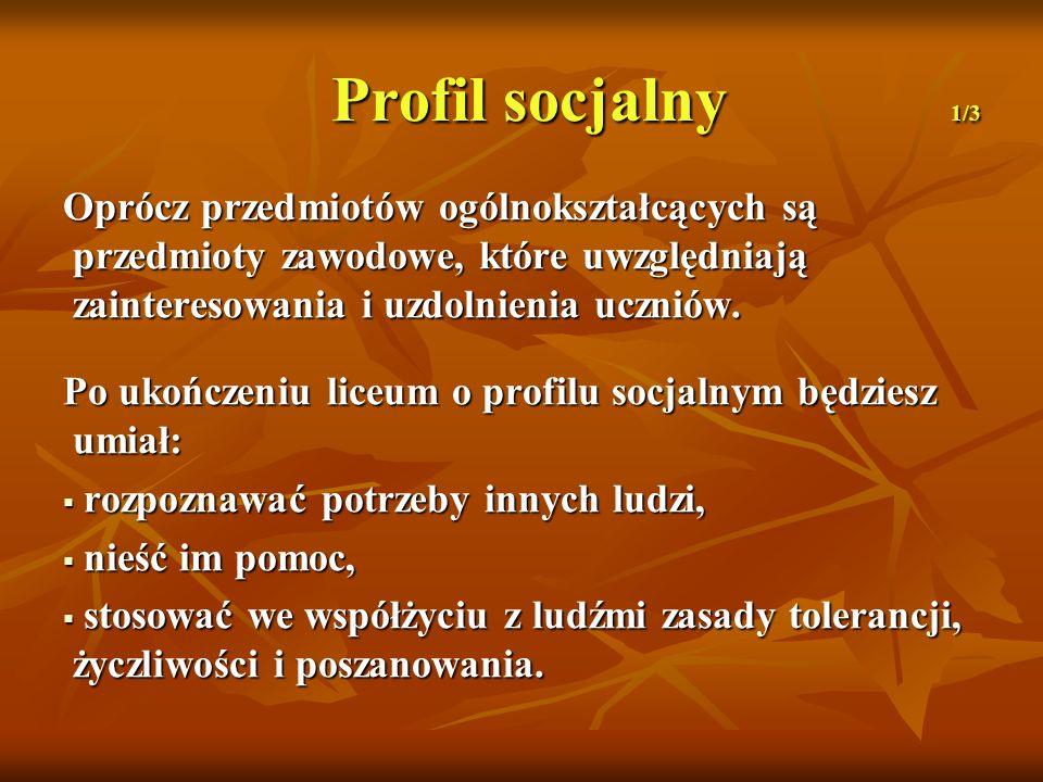 Profil socjalny 1/3