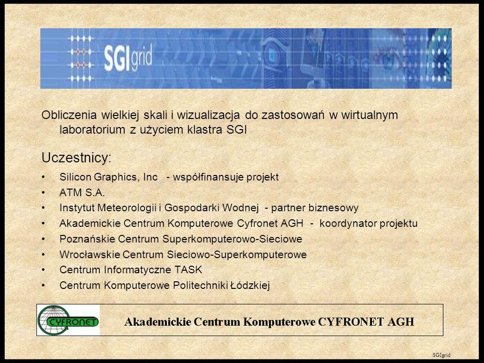 Obliczenia wielkiej skali i wizualizacja do zastosowań w wirtualnym laboratorium z użyciem klastra SGI