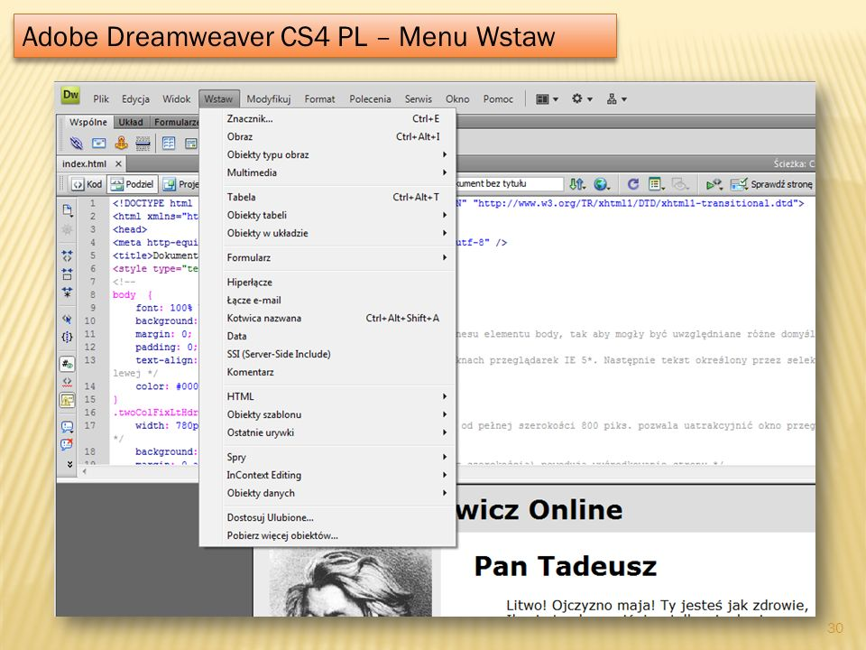 Adobe Dreamweaver CS4 PL – Menu Wstaw
