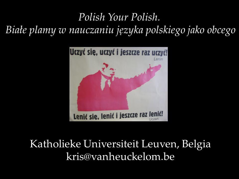 Białe plamy w nauczaniu języka polskiego jako obcego