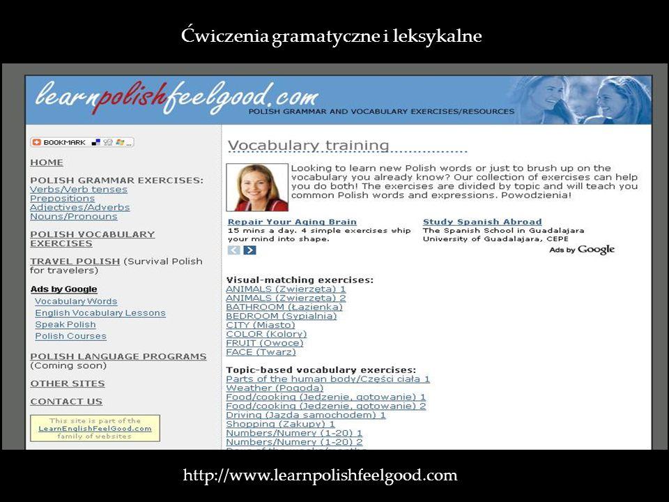 Ćwiczenia gramatyczne i leksykalne