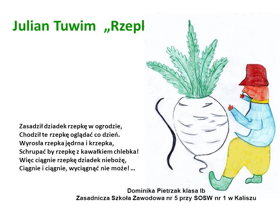 "Julian Tuwim ""Rzepka"