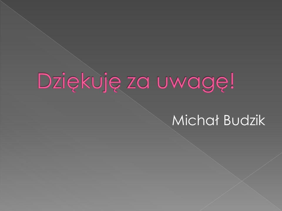 Dziękuję za uwagę! Michał Budzik