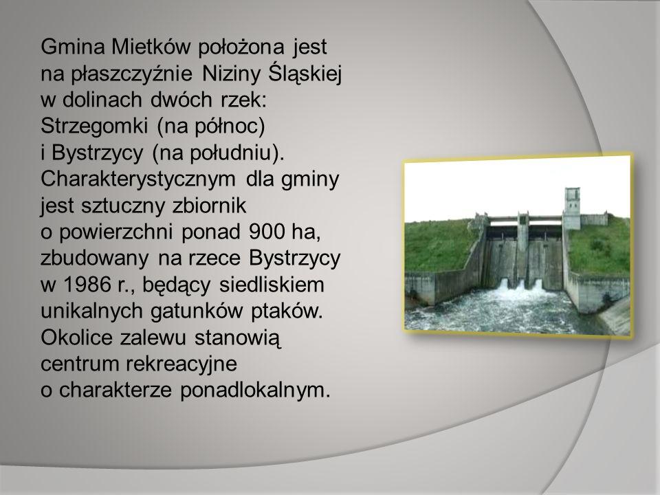 Gmina Mietków położona jest na płaszczyźnie Niziny Śląskiej w dolinach dwóch rzek: Strzegomki (na północ) i Bystrzycy (na południu).