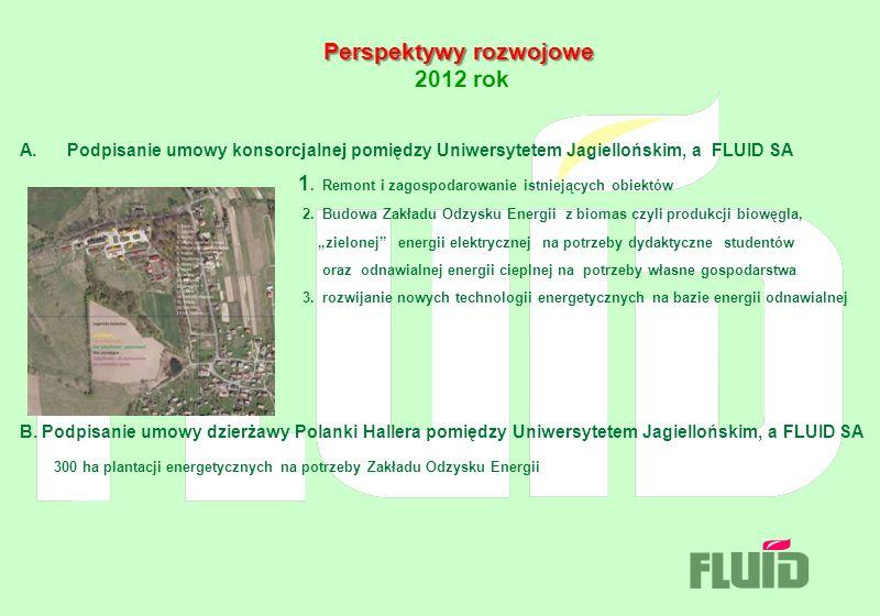 Perspektywy rozwojowe 2012 rok