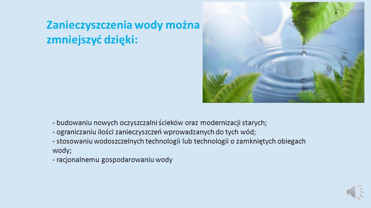 Zanieczyszczenia wody można zmniejszyć dzięki: