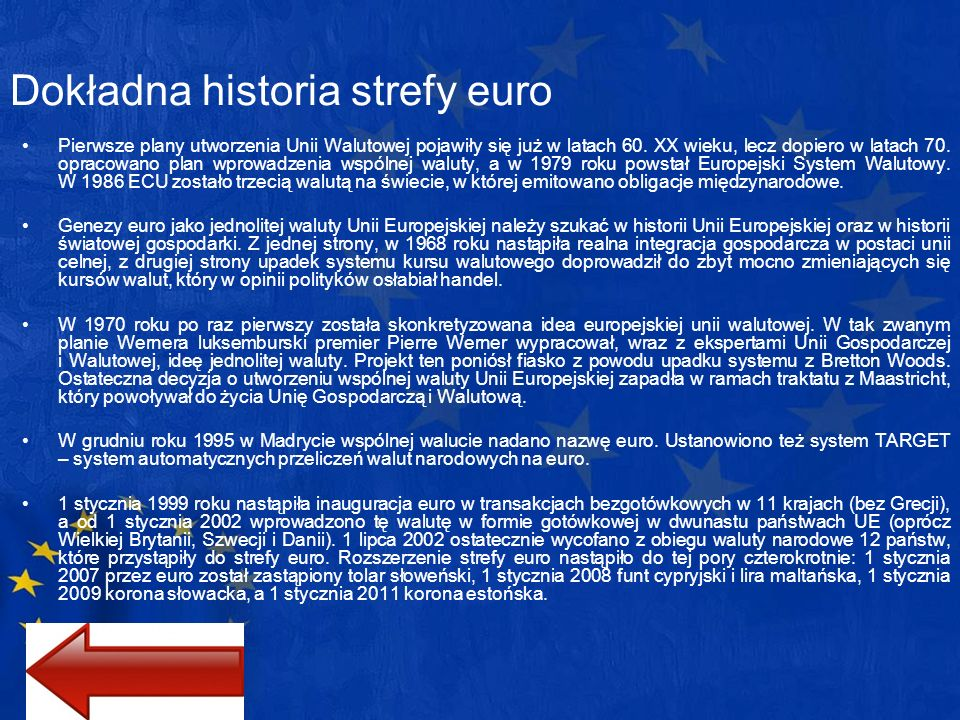 Dokładna historia strefy euro