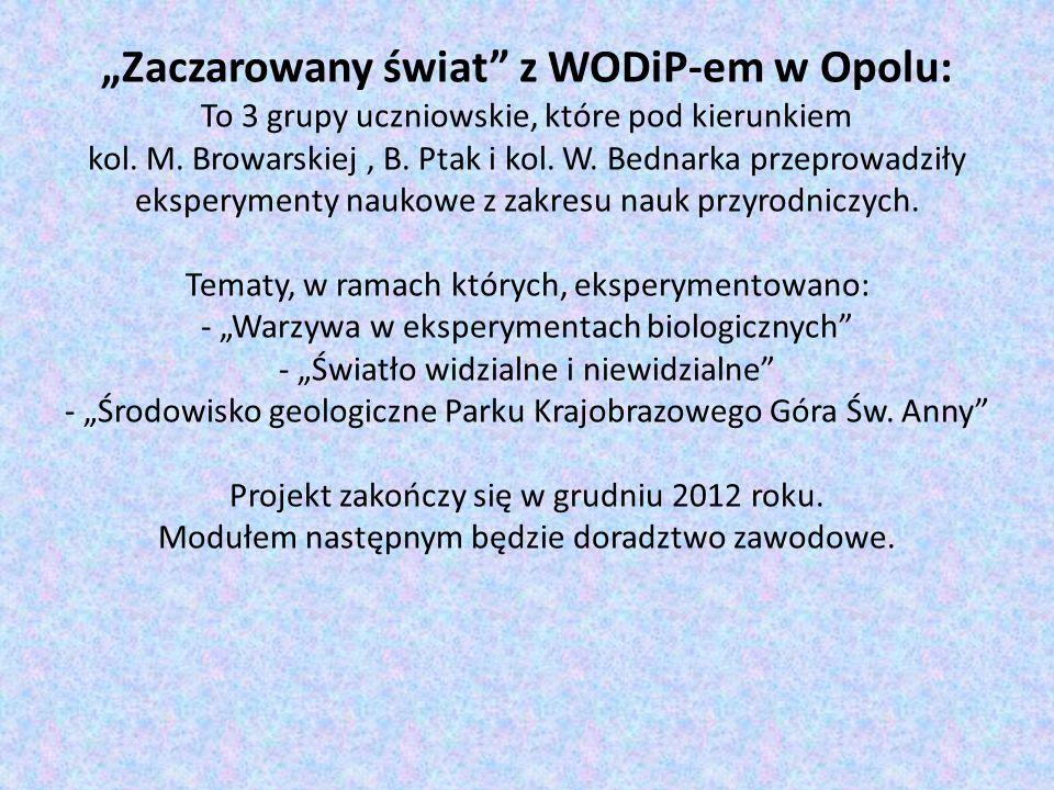 """""""Zaczarowany świat z WODiP-em w Opolu: To 3 grupy uczniowskie, które pod kierunkiem kol."""