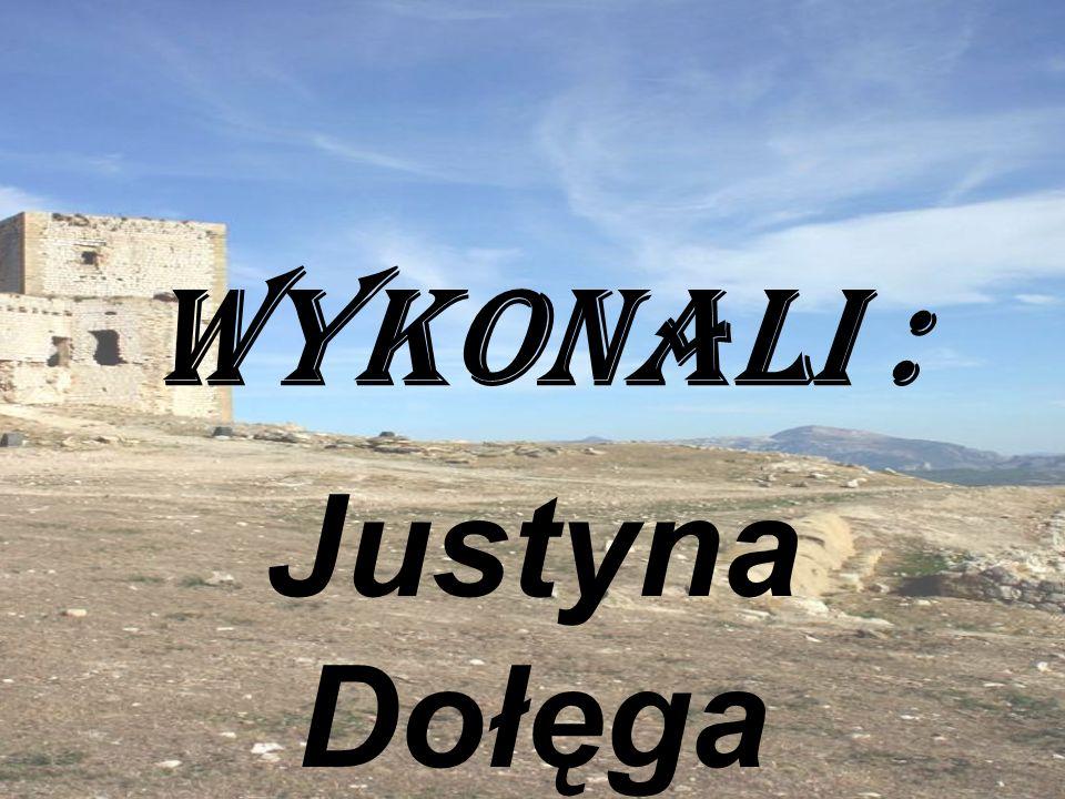 Justyna Dołęga Oliwia Chmiel Adrian Plizga Marcin Mac