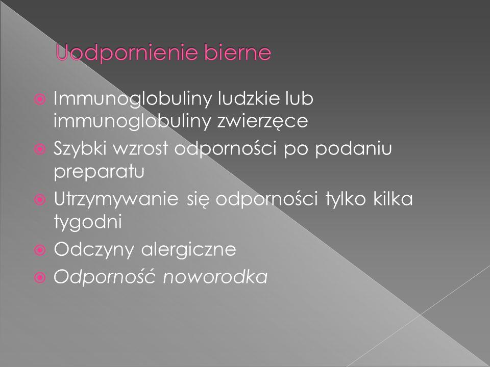 Immunoglobuliny ludzkie lub immunoglobuliny zwierzęce