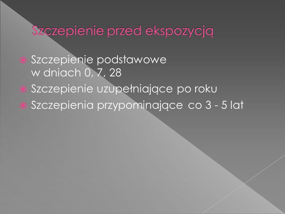 Szczepienie podstawowe w dniach 0, 7, 28