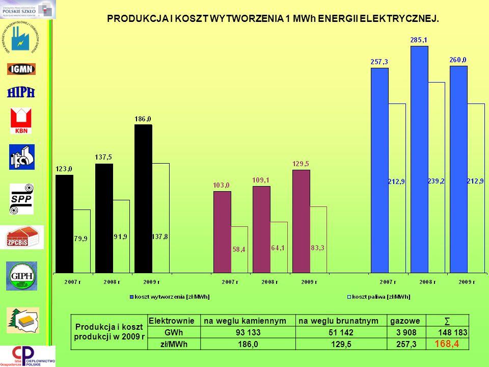 Produkcja i koszt produkcji w 2009 r