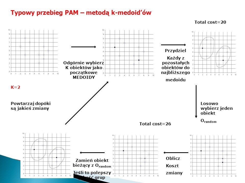 Typowy przebieg PAM – metodą k-medoid'ów