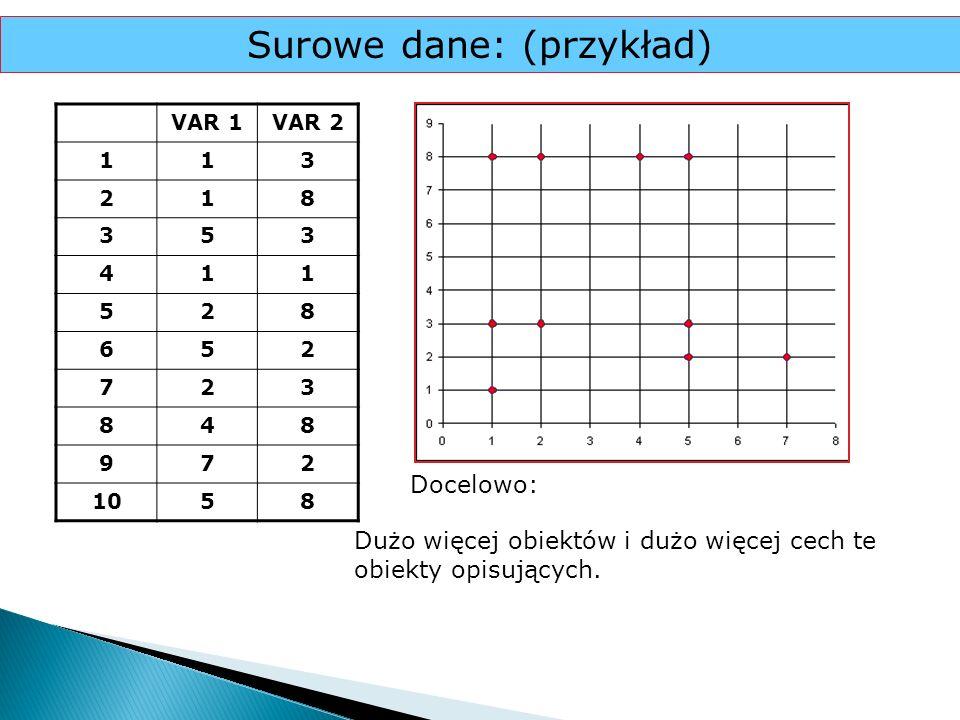 Surowe dane: (przykład)