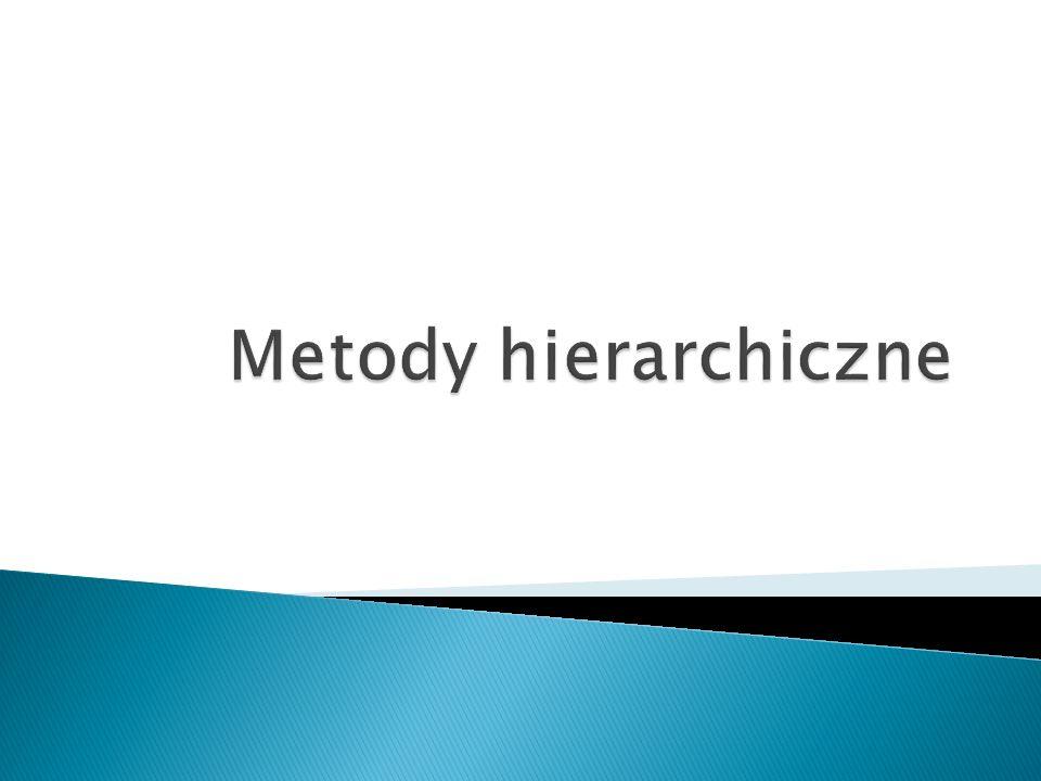 Metody hierarchiczne