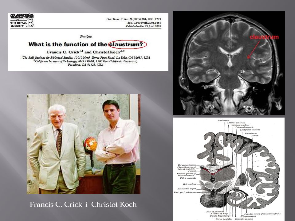 Francis C. Crick i Christof Koch