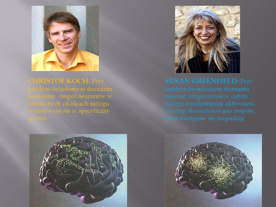 CHRISTOF KOCH: Przy każdym świadomym doznaniu konkretny zespół neuronów w określonych okolicach mózgu wyładowuje się w specyficzny sposób.