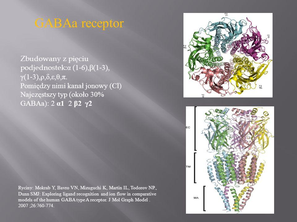 GABAa receptorZbudowany z pięciu podjednostek:α (1-6),β(1-3), γ(1-3),ρ,δ,ε,θ,π. Pomiędzy nimi kanał jonowy (Cl)