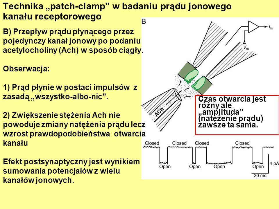 """Technika """"patch-clamp w badaniu prądu jonowego kanału receptorowego"""