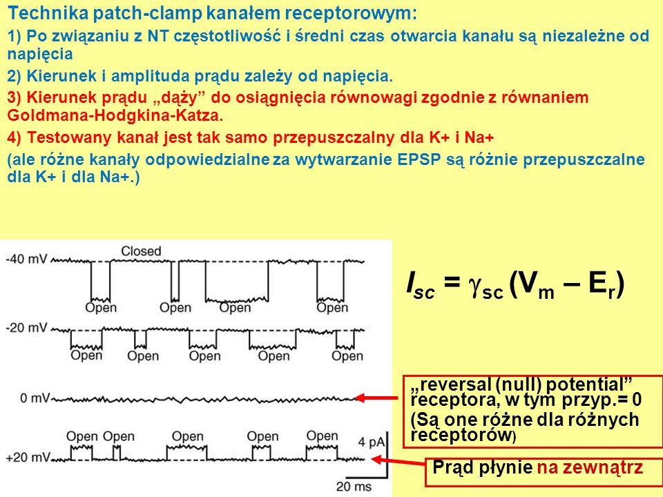 Isc = sc (Vm – Er) Technika patch-clamp kanałem receptorowym: