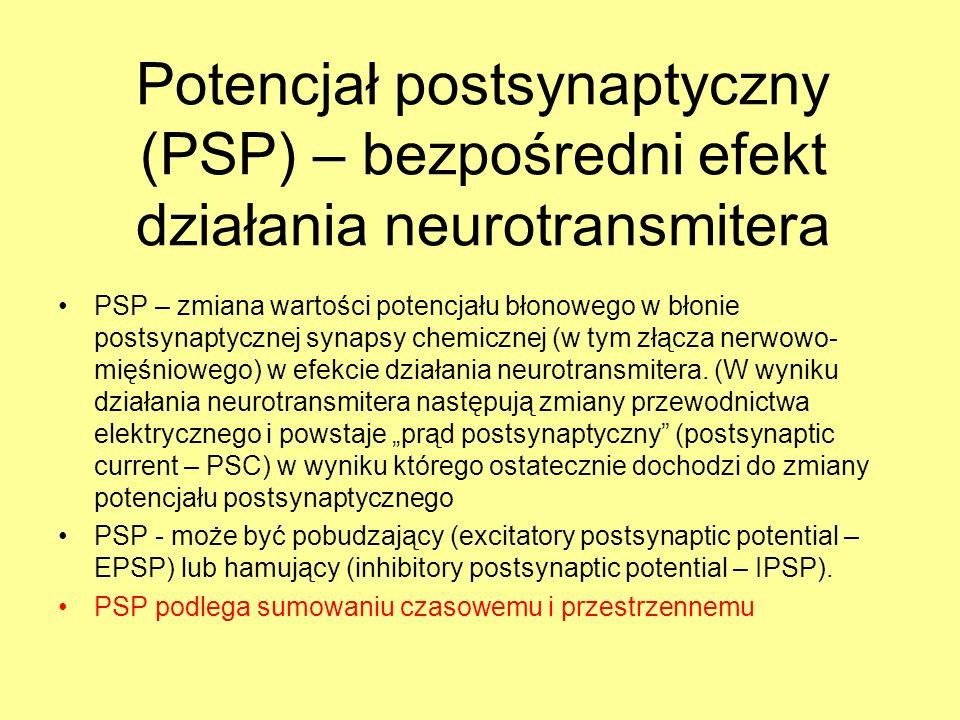 Potencjał postsynaptyczny (PSP) – bezpośredni efekt działania neurotransmitera