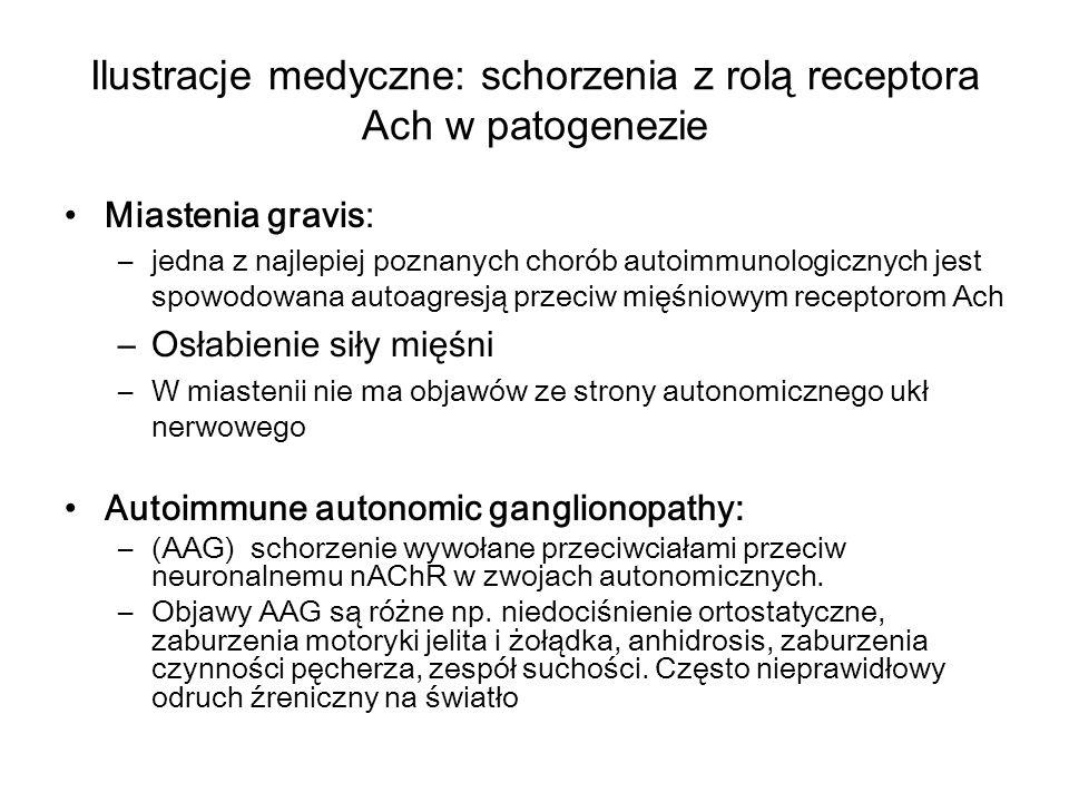 Ilustracje medyczne: schorzenia z rolą receptora Ach w patogenezie