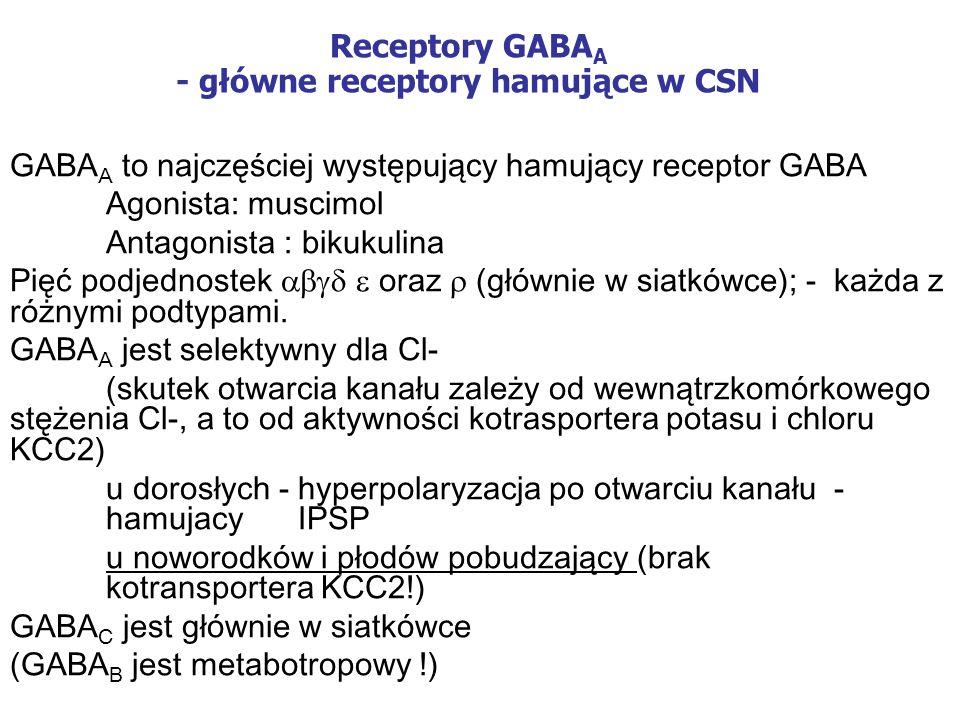 Receptory GABAA - główne receptory hamujące w CSN