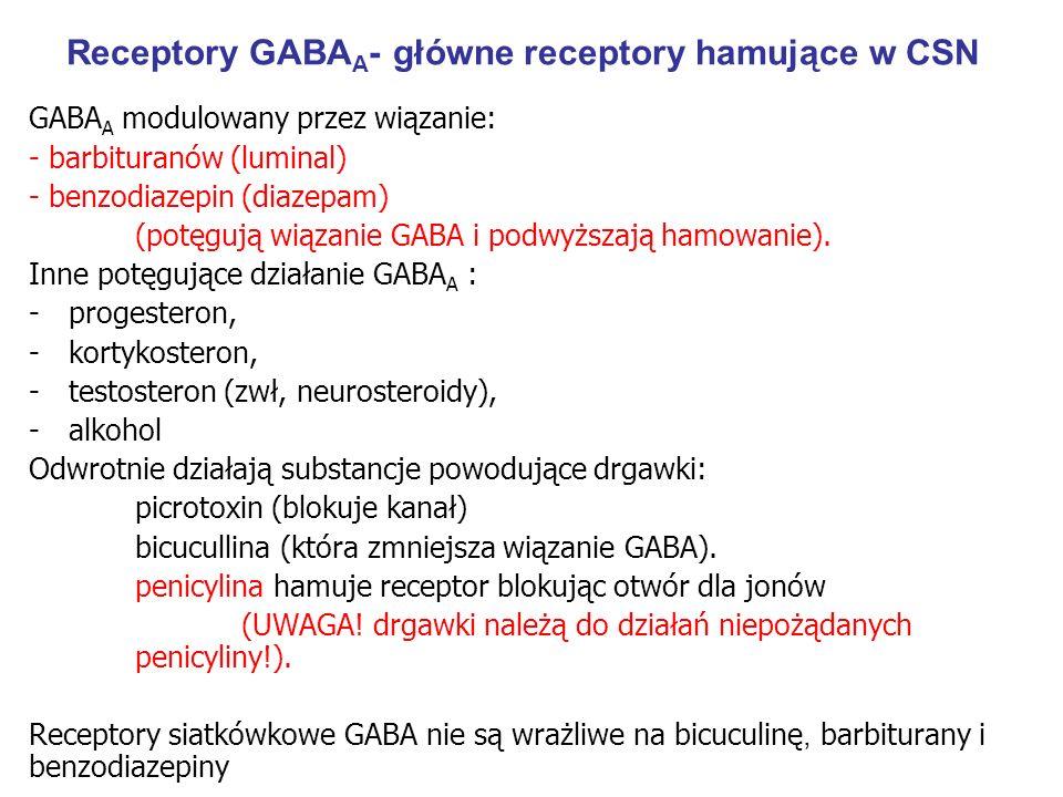 Receptory GABAA- główne receptory hamujące w CSN