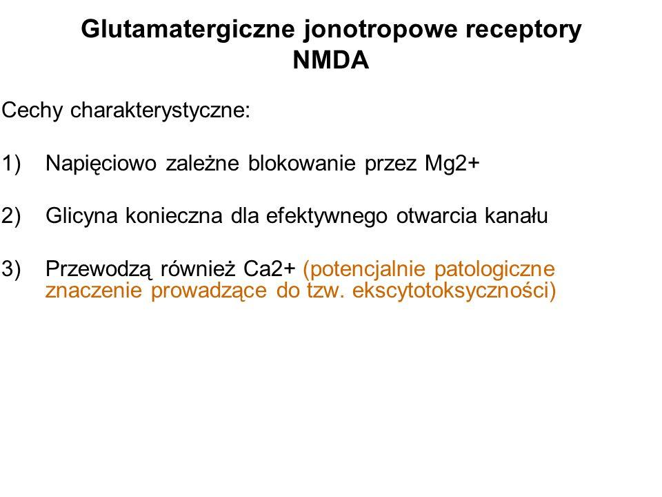 Glutamatergiczne jonotropowe receptory NMDA
