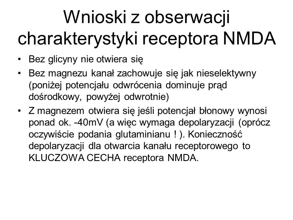 Wnioski z obserwacji charakterystyki receptora NMDA