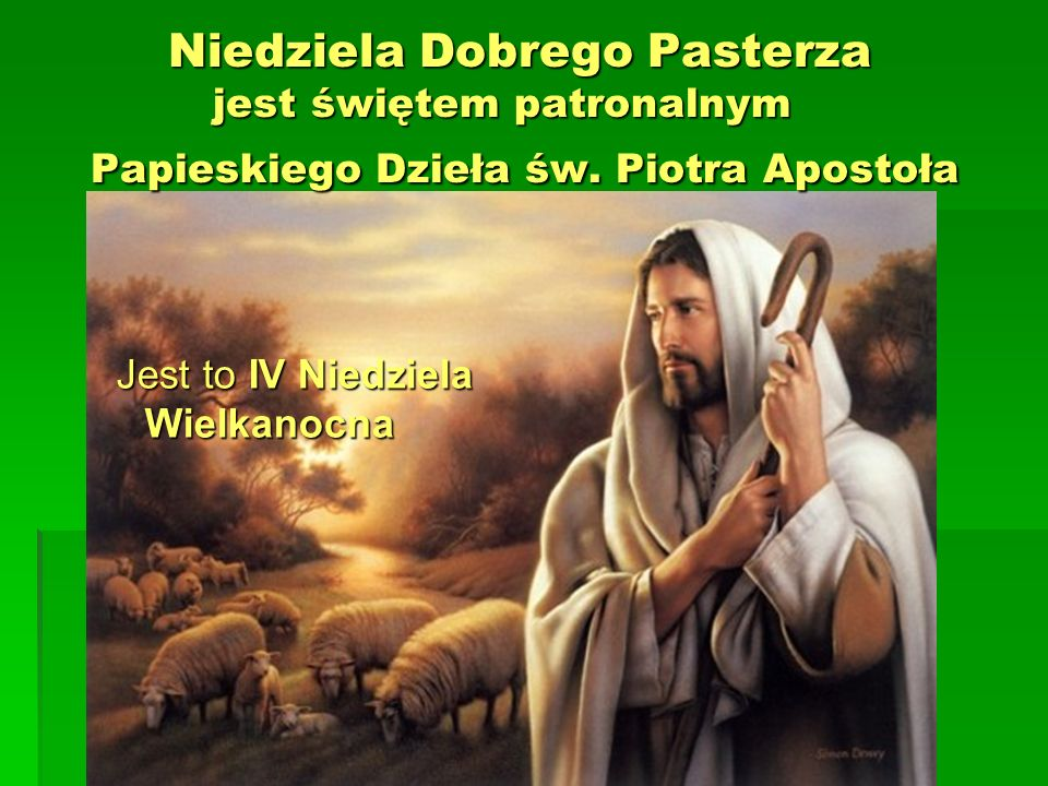 Niedziela Dobrego Pasterza jest świętem patronalnym Papieskiego Dzieła św. Piotra Apostoła