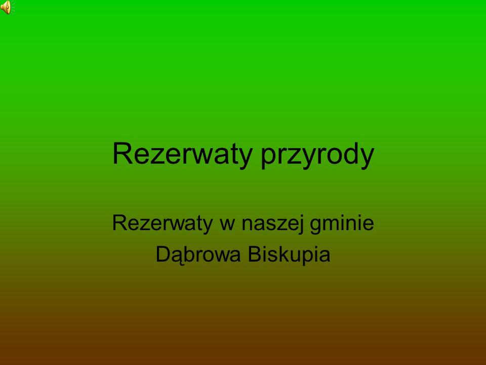 Rezerwaty w naszej gminie Dąbrowa Biskupia