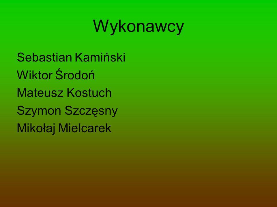 Wykonawcy Sebastian Kamiński Wiktor Środoń Mateusz Kostuch