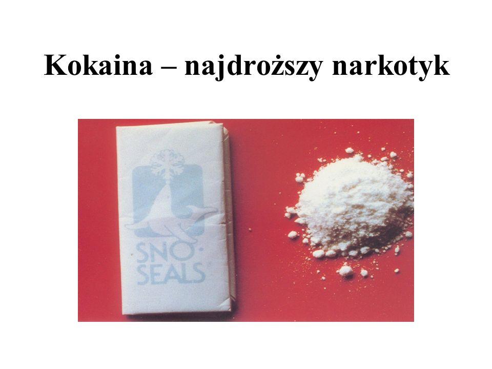 Kokaina – najdroższy narkotyk