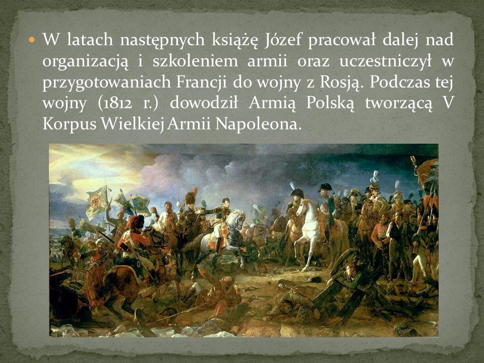 W latach następnych książę Józef pracował dalej nad organizacją i szkoleniem armii oraz uczestniczył w przygotowaniach Francji do wojny z Rosją.