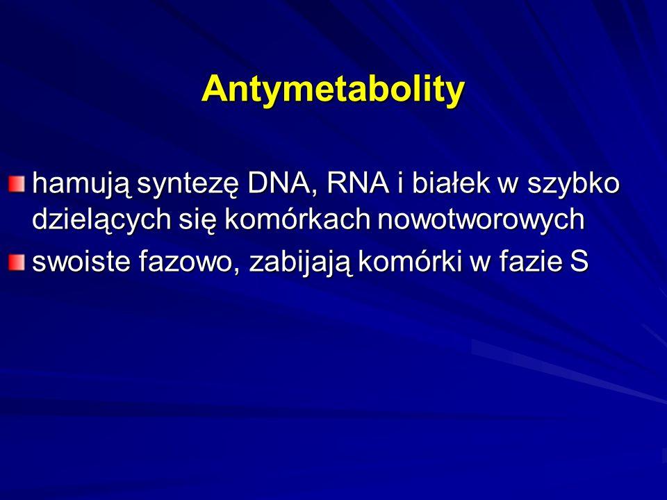 Antymetabolity hamują syntezę DNA, RNA i białek w szybko dzielących się komórkach nowotworowych.