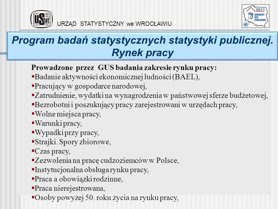 Program badań statystycznych statystyki publicznej. Rynek pracy