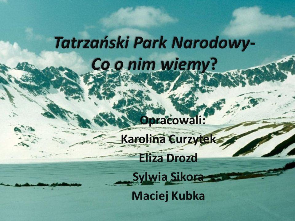Tatrzański Park Narodowy- Co o nim wiemy