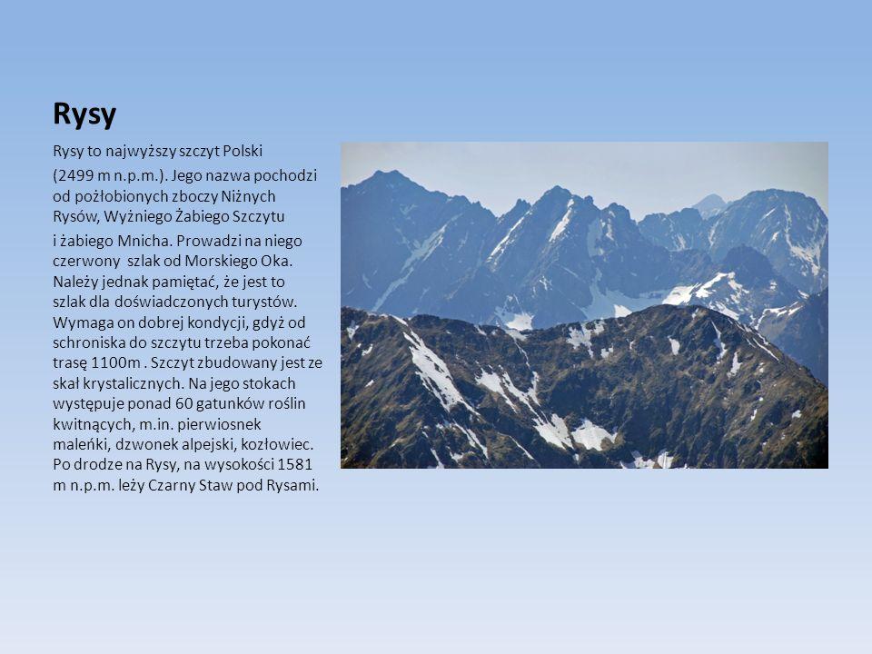 Rysy Rysy to najwyższy szczyt Polski