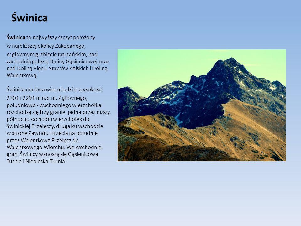 Świnica Świnica to najwyższy szczyt położony