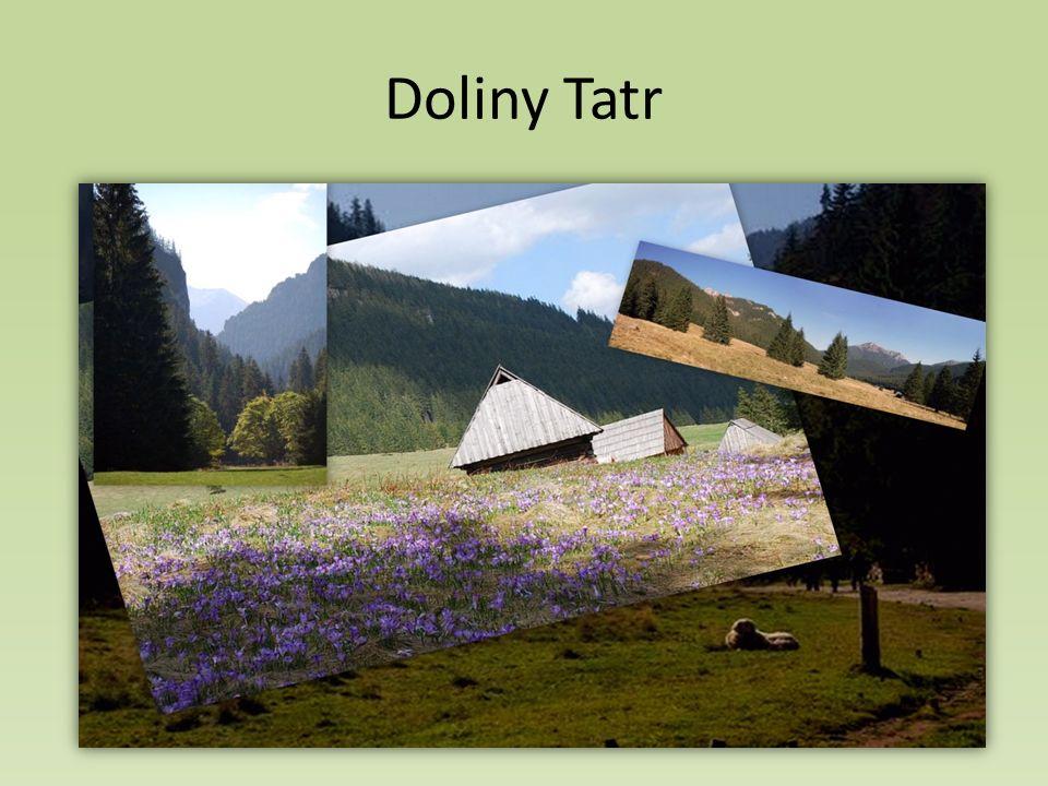 Doliny Tatr