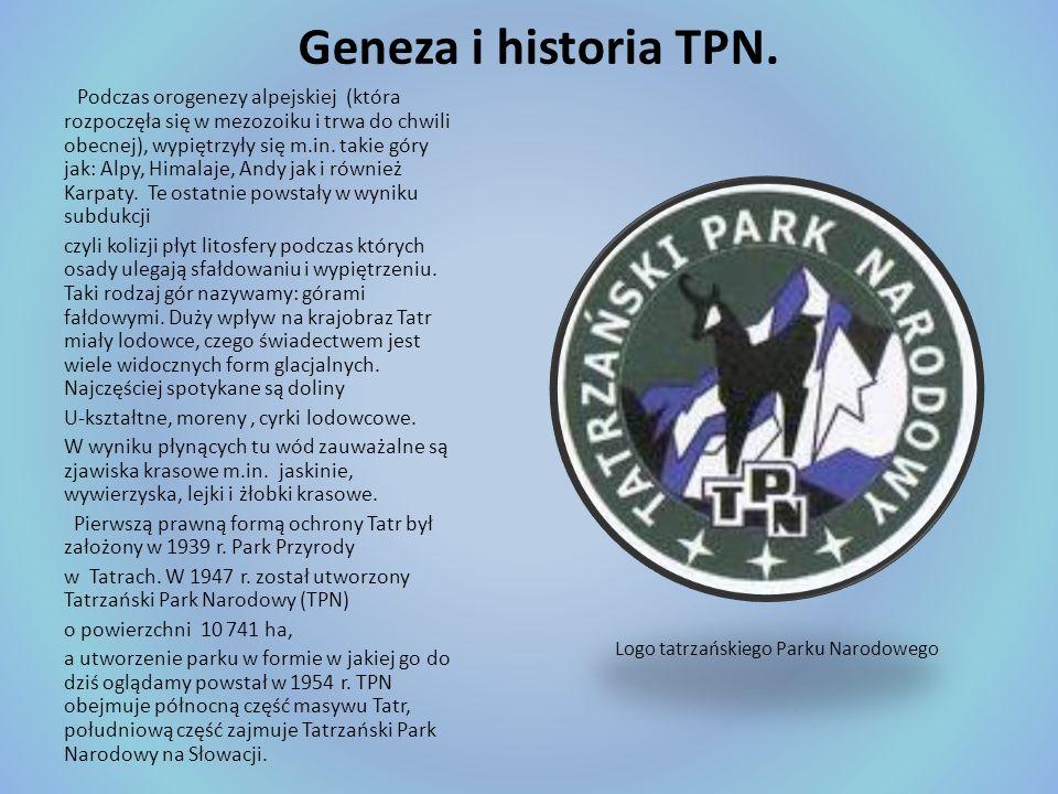 Geneza i historia TPN.