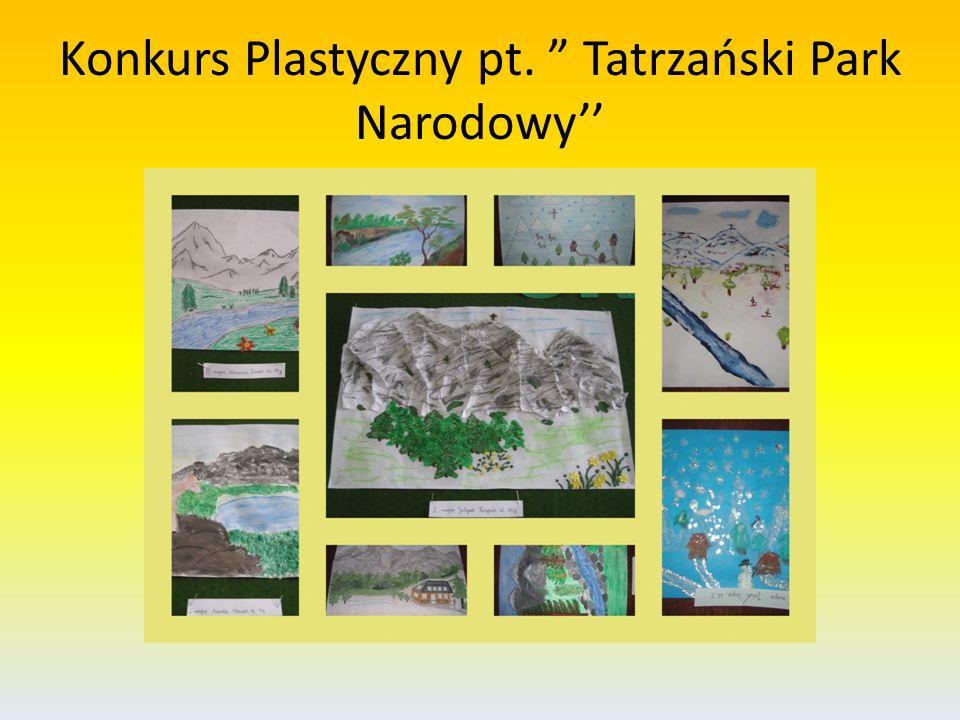 Konkurs Plastyczny pt. Tatrzański Park Narodowy''