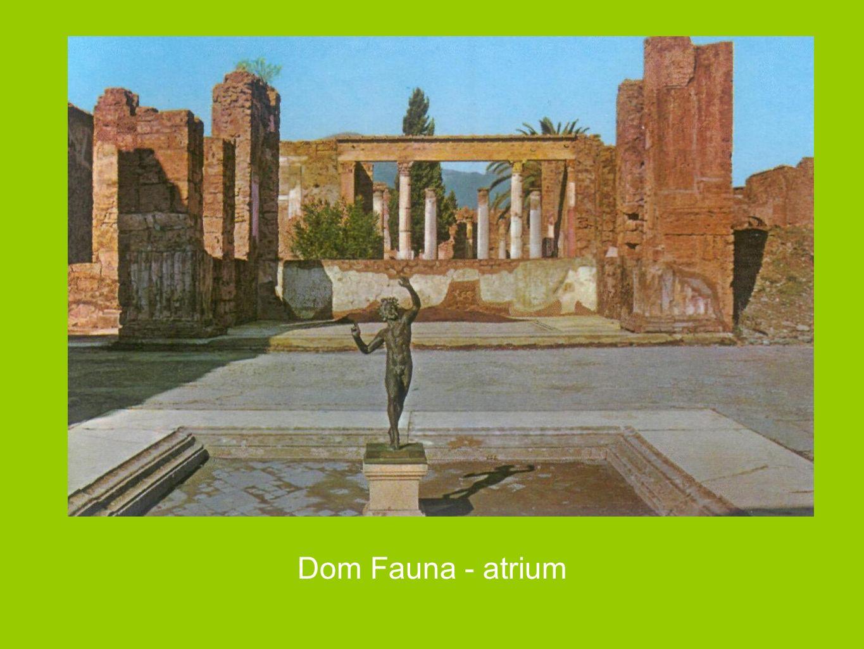 Dom Fauna - atrium