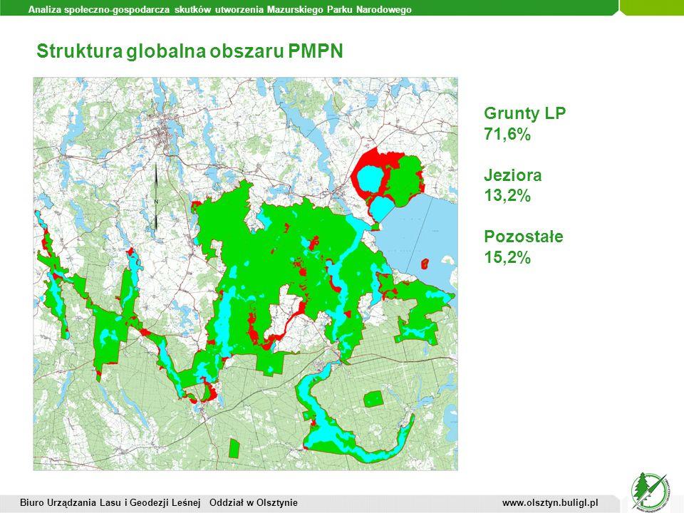 Struktura globalna obszaru PMPN