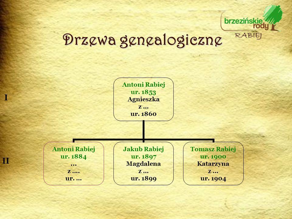 Drzewa genealogiczne RABIEJ I II
