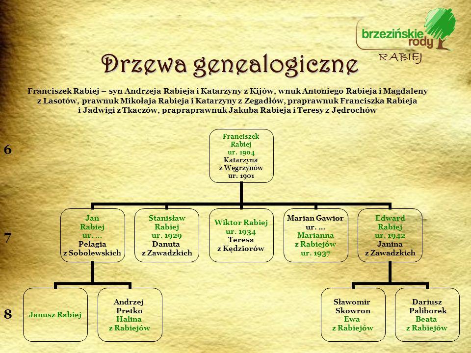 Drzewa genealogiczne RABIEJ 6 7 8